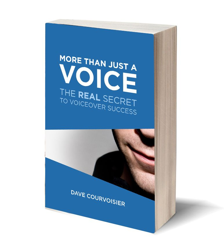 More than Just a Voice - 3d book cover image